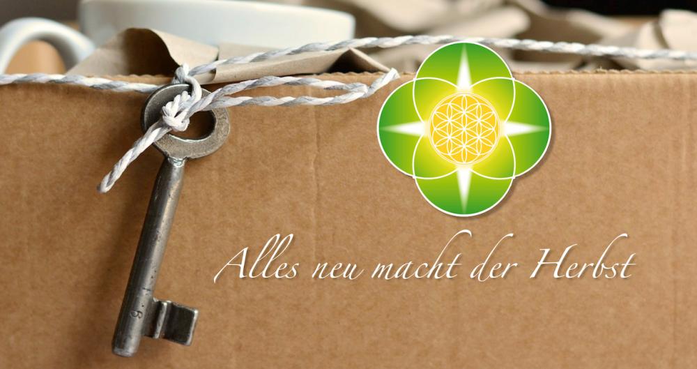 Umzug Unsicherheit Anjali Friedli Matrix Live Quantenheilung
