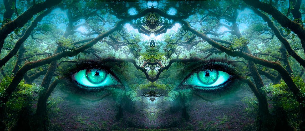 Was ist Bewusstsein? Kurz erklärt