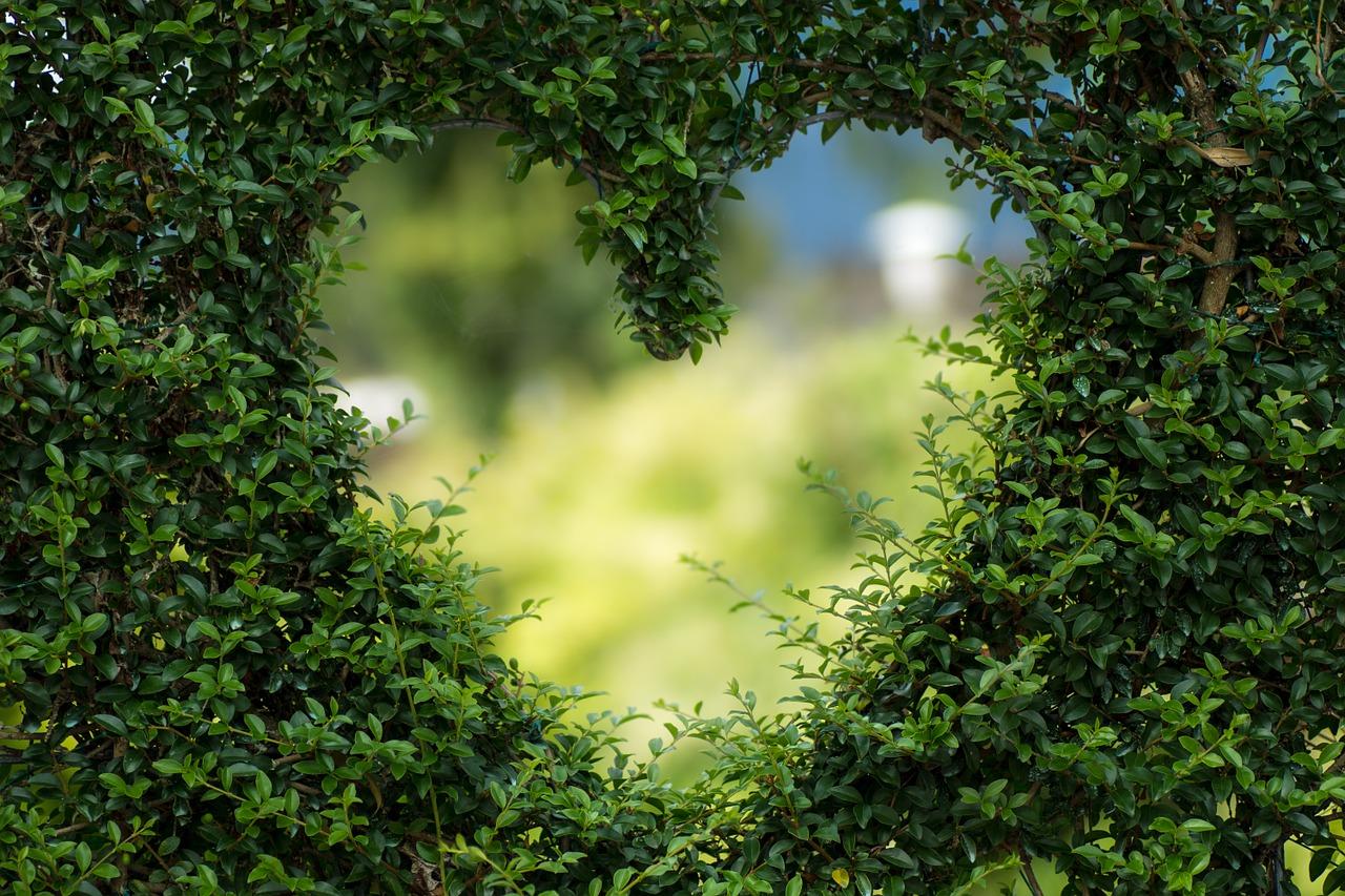 Was sind Herzenswünsche? Kurz erklärt